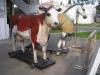 Es0310.- Vaca y caballo.